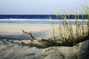 Tybee Island Savannah Beach